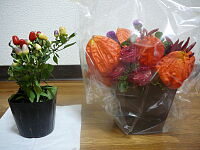 samuraiさんからいただいたプレゼント(左)、USHIZOさん・かぷさんご夫妻からいただいたプレゼント(右)